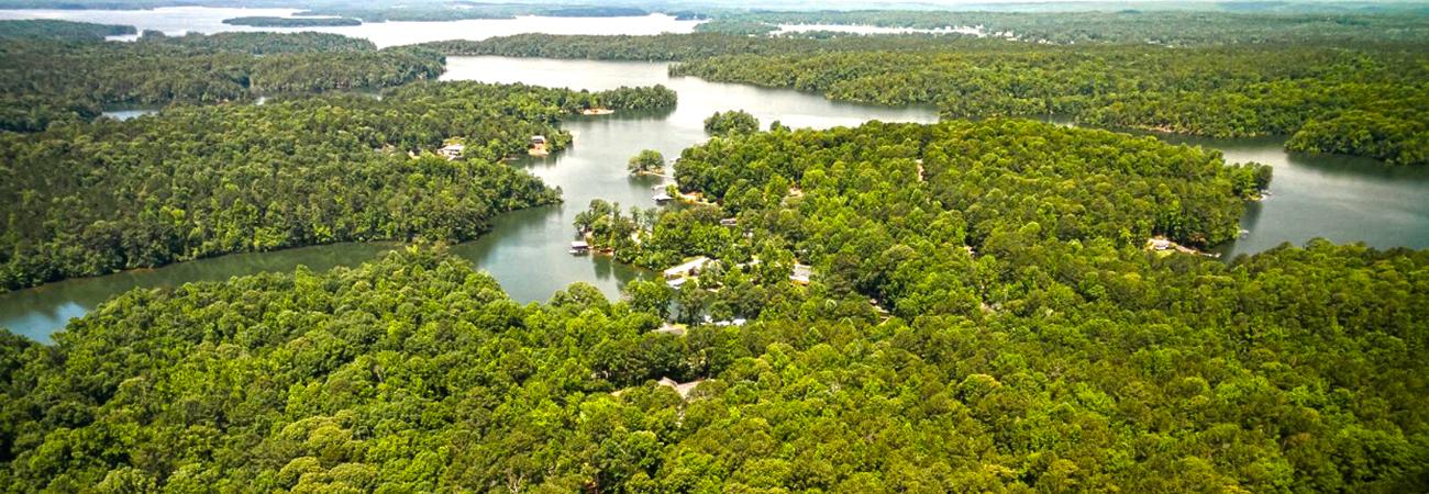 lake martin aerial